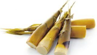 13 applications intéressantes des pousses de bambou