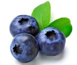Blueberry-300x254