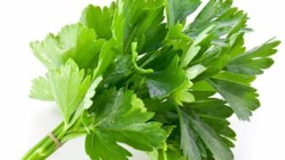 16 avantages incroyables du cilantro ou de la coriandre