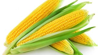 Is Corn a Vegetable, Fruit, or Grain?