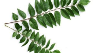Top 11 Benefits of Curry Leaves
