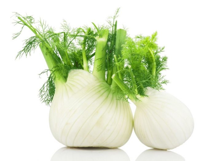 Organic Fennel Bulb (Large)