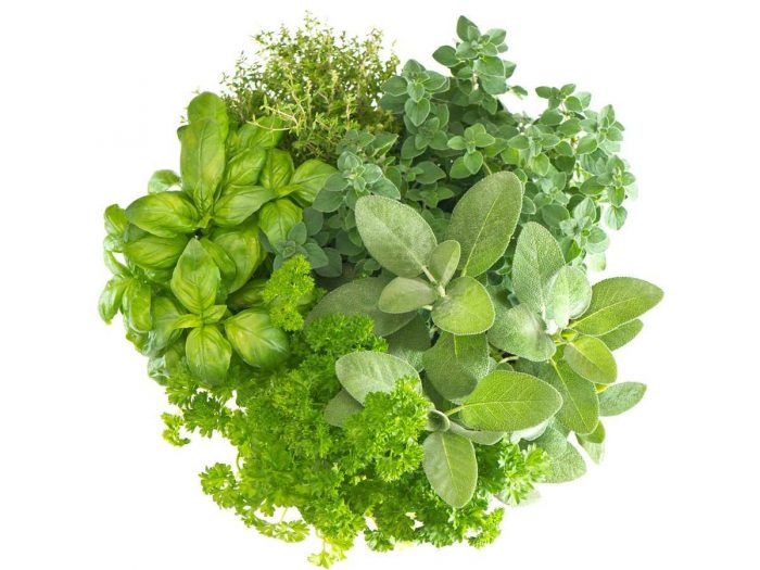 Health Benefits of Herbs