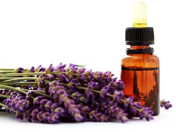 Health Benefits of Lavender Essential Oil