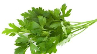 How to Store Parsley?
