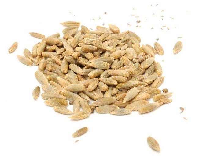 Health Benefits of Rye