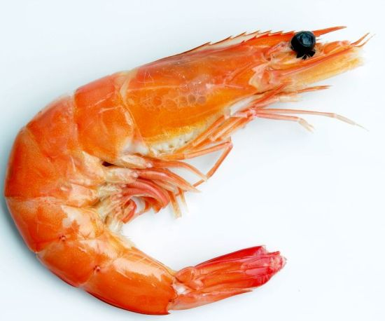 Nutritional Value of Shrimp and Chicken