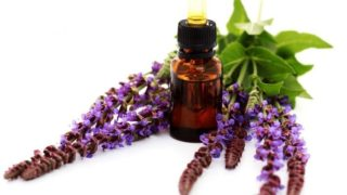 17 Surprising Benefits of Sage Essential Oil