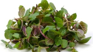 8 Sorprendentes beneficios de menta verde