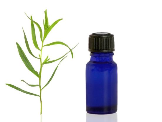 Health Benefits of Tarragon Essential Oil