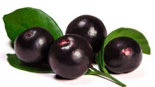 Gesundheitliche Vorteile Von Acai Beeren