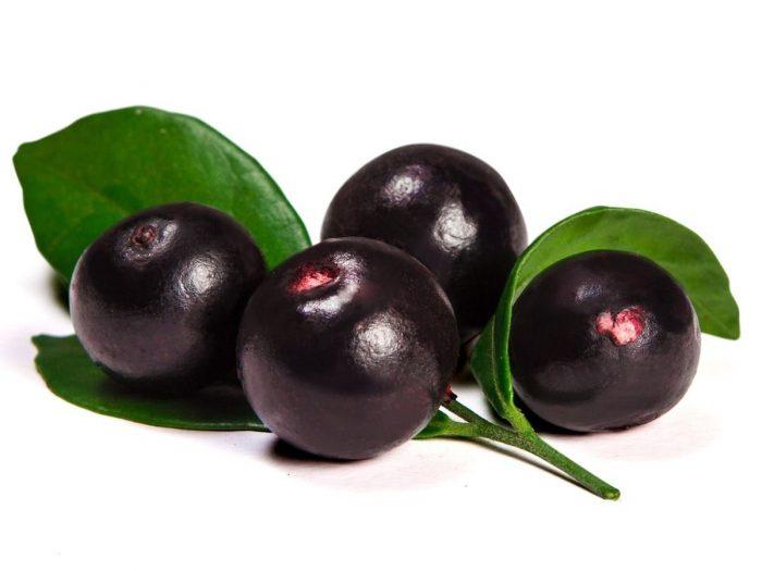 Health Benefits of Acai Berries