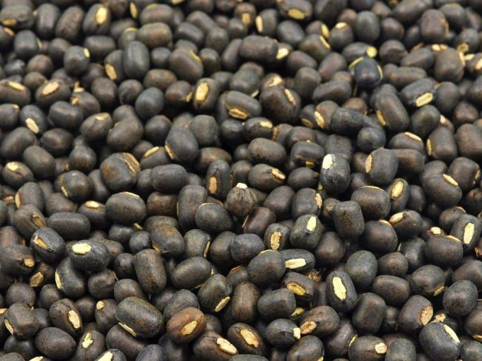 Nutritional Value of Chickpeas and Black Gram