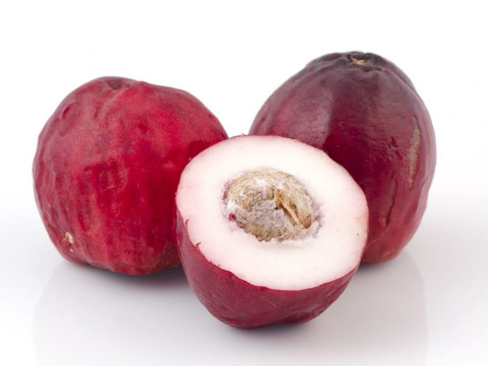 Nutritional Value of Malay Apple and Pond Apple