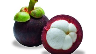 Gesundheitliche Vorteile von Mangostan