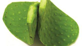 11 Impressive Benefits of Nopales