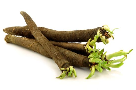 Health Benefits of Salsify