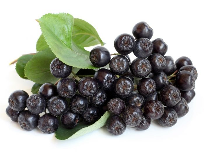 Health Benefits of Chokeberries