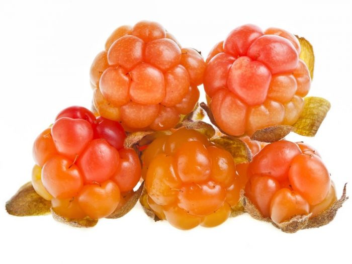 Health Benefits of Cloudberry