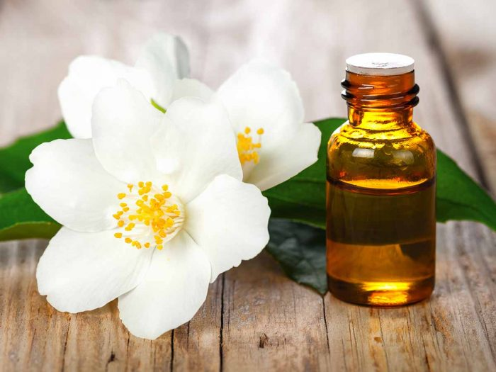 13 Top Benefits Uses Of Jasmine Essential Oil Organic Facts