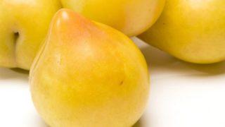 3 Best Benefits of Lemon Plums
