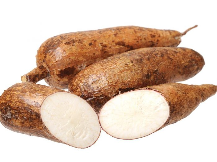 manioccassava
