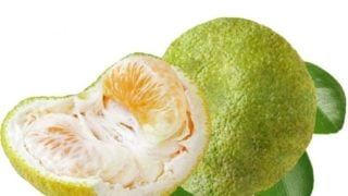 Nutritional Value and Benefits: Tangelo and Salak