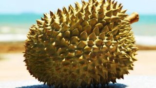 Les Bienfaits Du Durian Sur Notre Santé