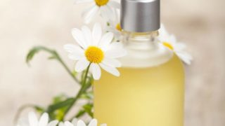 A bottle of chamomile or chamomile essential oil with fresh white chamomile flowers