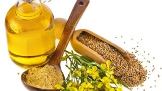11 Impressive Benefits of Mustard Essential Oil