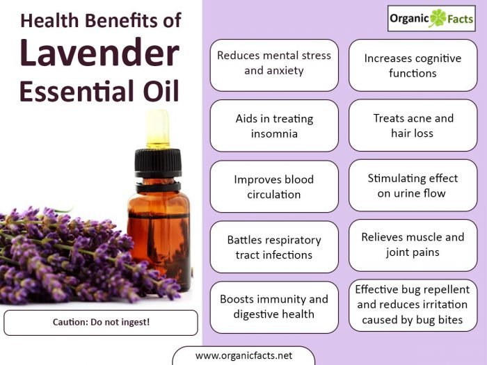 Health Benefits Of Lavender Essential Oil Organic Facts