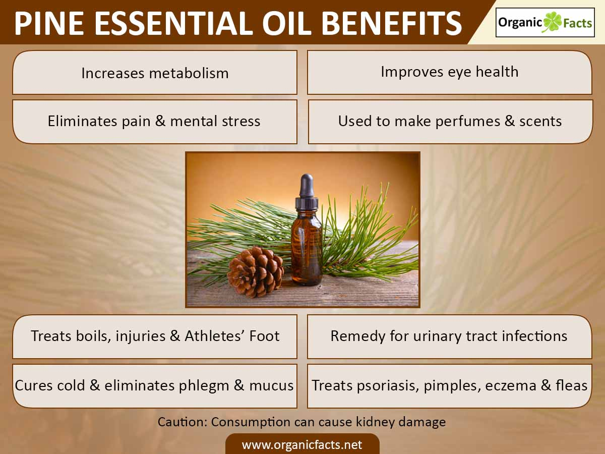9 amazing benefits of pine essential oil organic facts. Black Bedroom Furniture Sets. Home Design Ideas