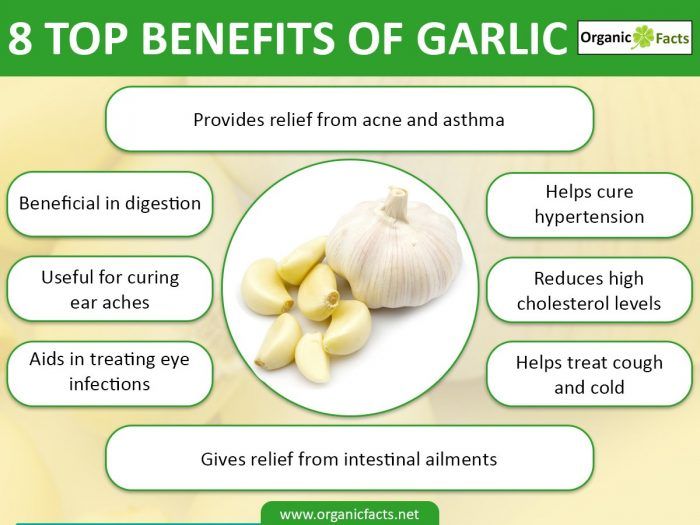 13 Interesting Benefits Of Garlic Organic Facts