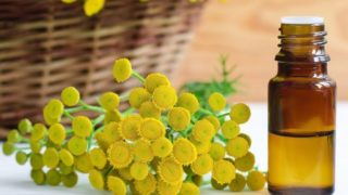 10 Amazing Benefits of Tansy Essential Oil