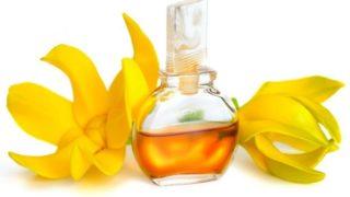 Gesundheitliche Vorteile Von Ätherischem Ylang-Ylang Öl