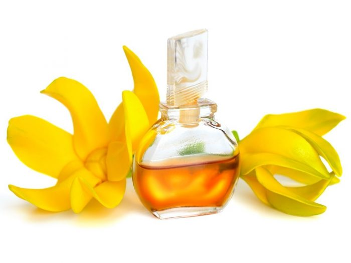 Ylang essential oil