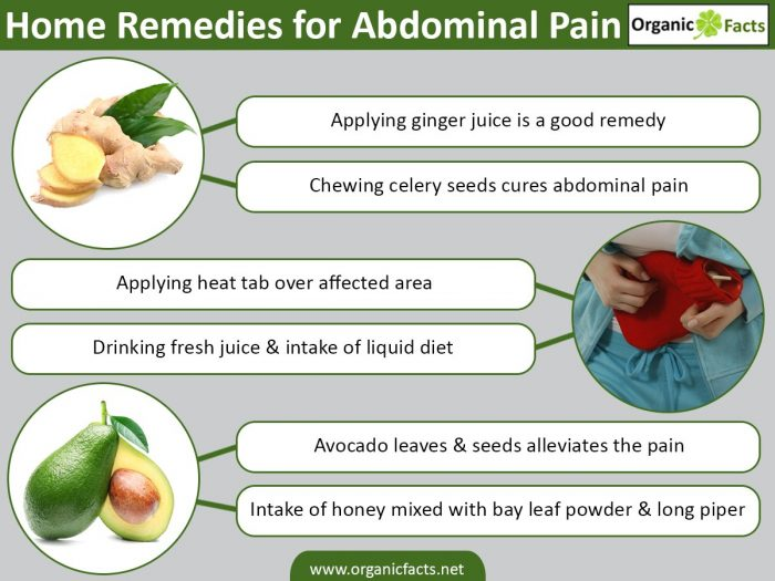 best essential oil for stomach bug download pdf