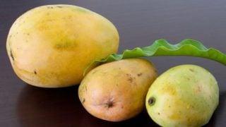 6 Amazing Benefits of Mango Butter