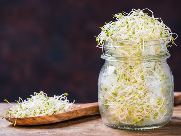 A jar of sprouts and a wooden spoon with sprouts on a wooden counter