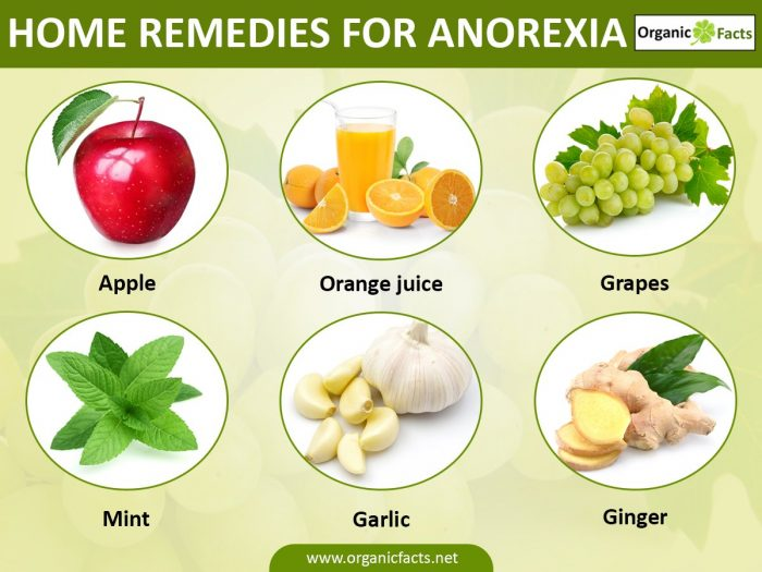 Home Remedies for Anorexia | Organic Facts