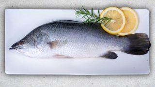 Barramundi fish on a white rectangular plate with lemon and dill