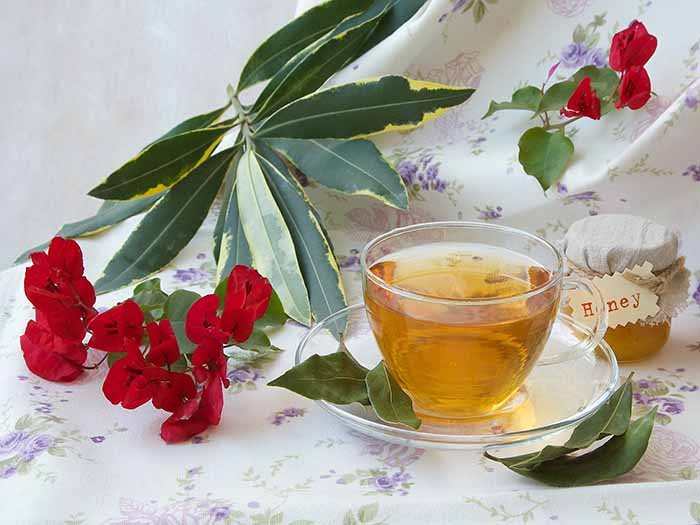 A cup of bay leaf tea kept beside bay flowers and leaves on a white tablecloth