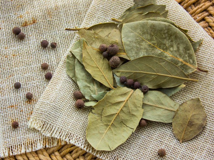 Dried bay leaves with bay seeds