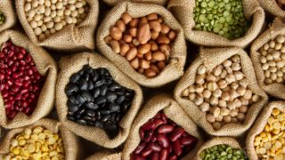 What are Macronutrients?