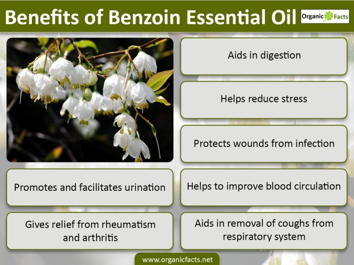 benzoinessentialoilinfo