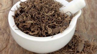 6 Incredible Benefits of Black Cohosh Tea