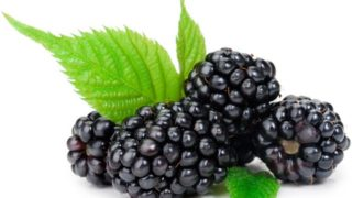 10 Amazing Benefits of Black Currant Oil