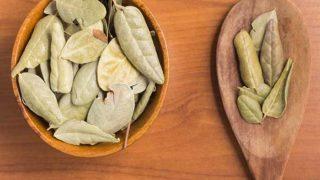 5 Proven Benefits of Boldo Tea