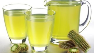 Cactus Juice: Benefits, Recipe & Side Effects