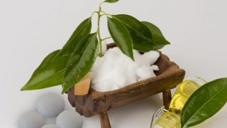 Top 7 Benefits of Camphor